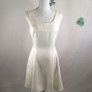 Ann Taylor Petites Dress Size 8p